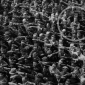 sign_authority_deviant_august_landmesser_1936
