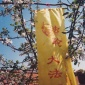 Falun_Dafa_is_good_banner_Heilongjiang_province_China