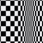 Bridget_Riley___Movement_in_Squares__1961_5571