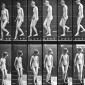 Eadweard_Muybridge_Animal_Locomotion_plate_137_ca_1887